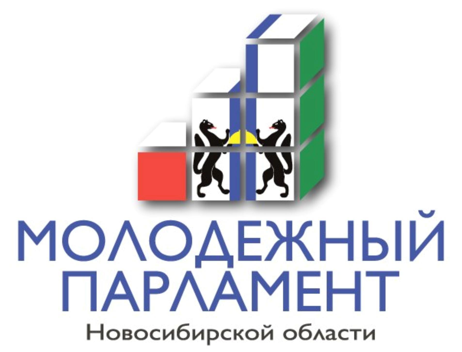 Выборы членов Молодежного парламента НСО III созыва
